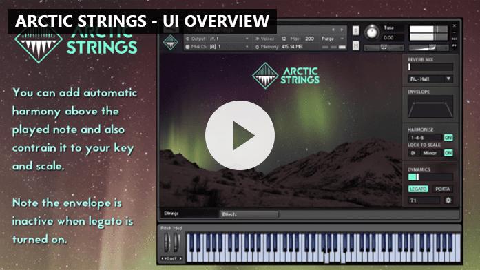 Arctic Strings - FrozenPlain